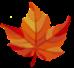 maple leaf for Kitsune